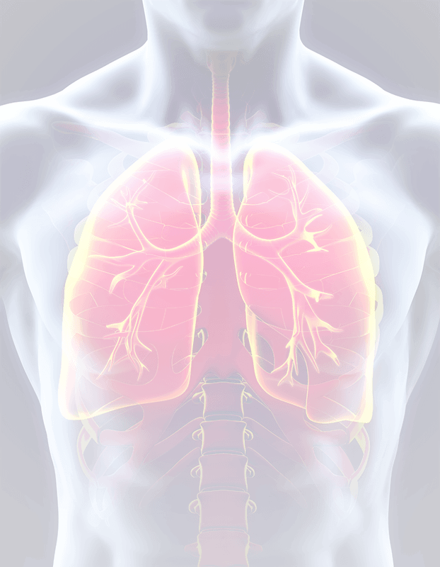 lungs-YIR